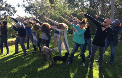Group DAB at Battle of Bosworth, McLaren Vale