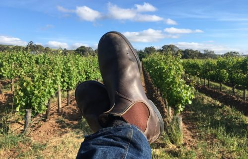 Boots over vines