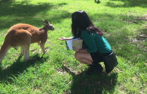 Chloe and the Kanga, Cleland Wildlife Park