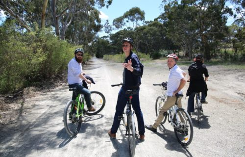 Cycling The Riesling Trail