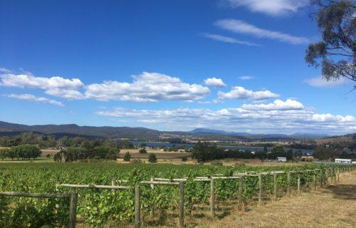 Stoney Rise, Tamar Valley, Tasmania