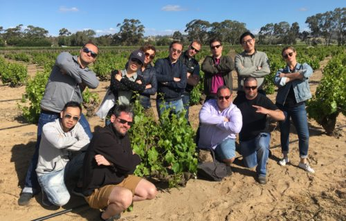 Hanging tough in the grenache
