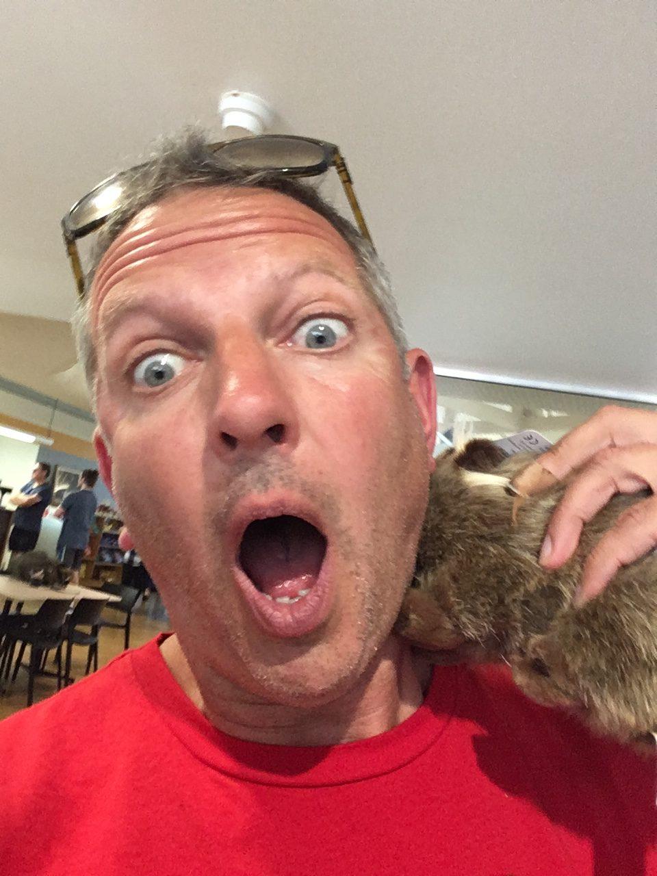 wombat attack